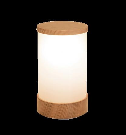 Wood-Rechargable-Ash